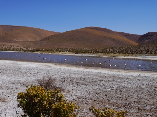 25-altiplano-lake
