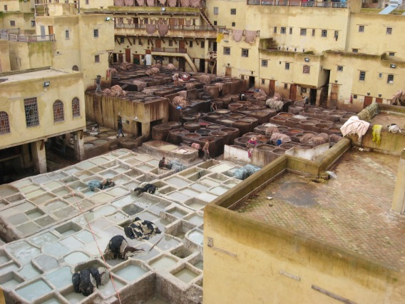 18 Fes Tanneries