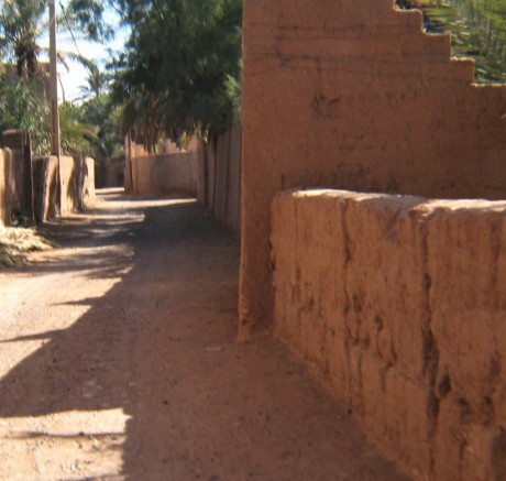 37 Desert red palm village