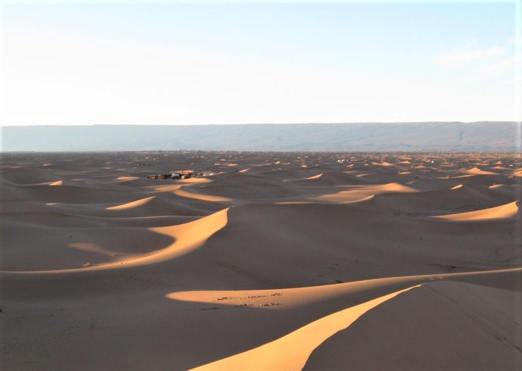 42 Desert Camp camp in background