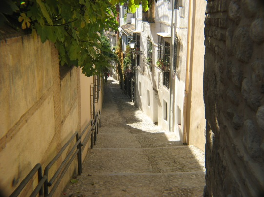 Old Town Granada Street